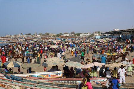 ジョアール漁港の賑わい(縮小)